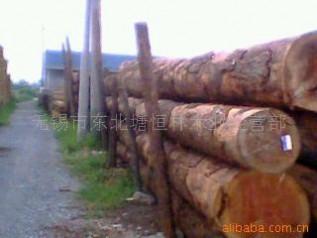 特价供应 花旗松 辐射松 木材松木 加松 铁杉 方木板材 包装料