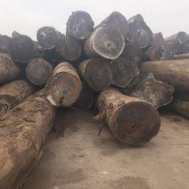 现货供应非洲红花梨板材 红花梨原木方料加工 园林古建材料
