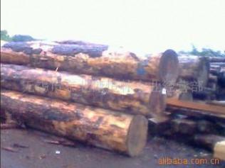 现货批发 加松 花旗松 辐射松 铁杉 方木板材 包装料
